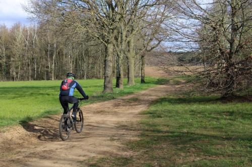 activiteit mountainbike