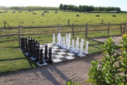 activiteit reuze schaakbord
